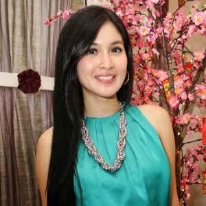 jagoan banten 10 artis tercantik di indonesia