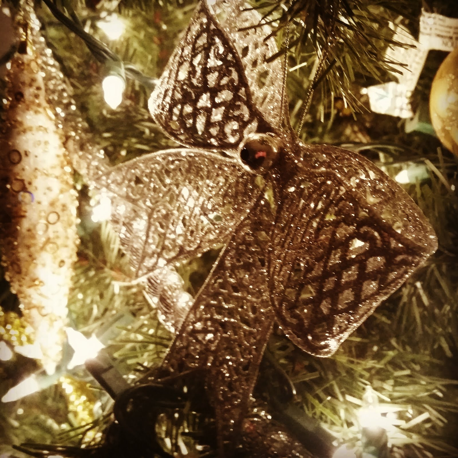 Finding My Life in Faith: The Reason for the Season