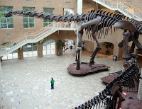 Fernbank Museum of Natural History
