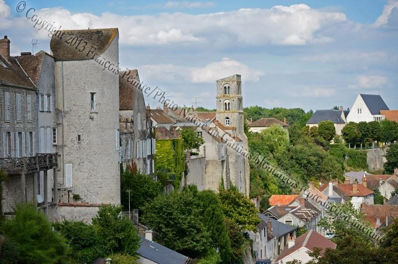 Château Landon vue d'ensemble