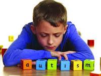 Pengertian Autis   Autisme