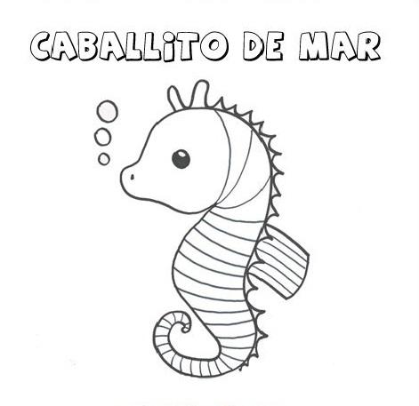 Bajo el mar: Animales Marinos