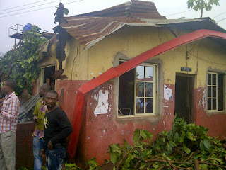 TRAGEDY: Tree kills 31, injures 16 in Imo
