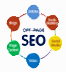 SEO Training Course in Pakistan