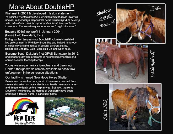 Summary of DoubleHP History