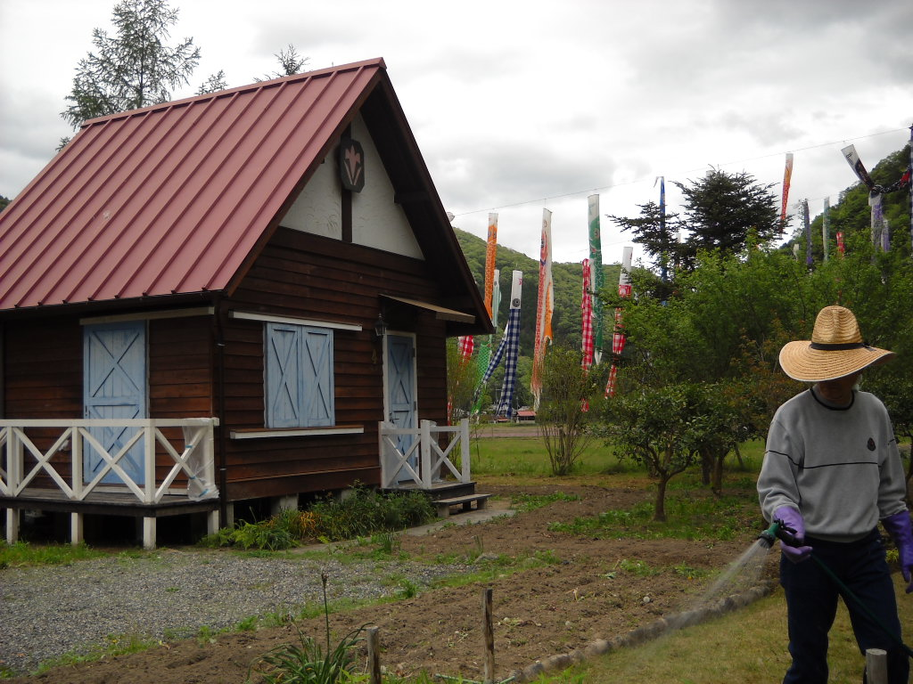 daily glimpses of japan koinobori carp flags in yachiyo freuden