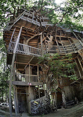 The World's Biggest Treehouse (14) 2
