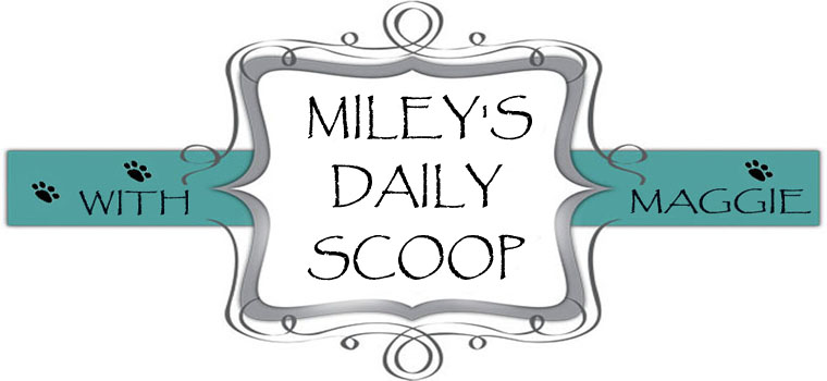 Miley's Daily Scoop!