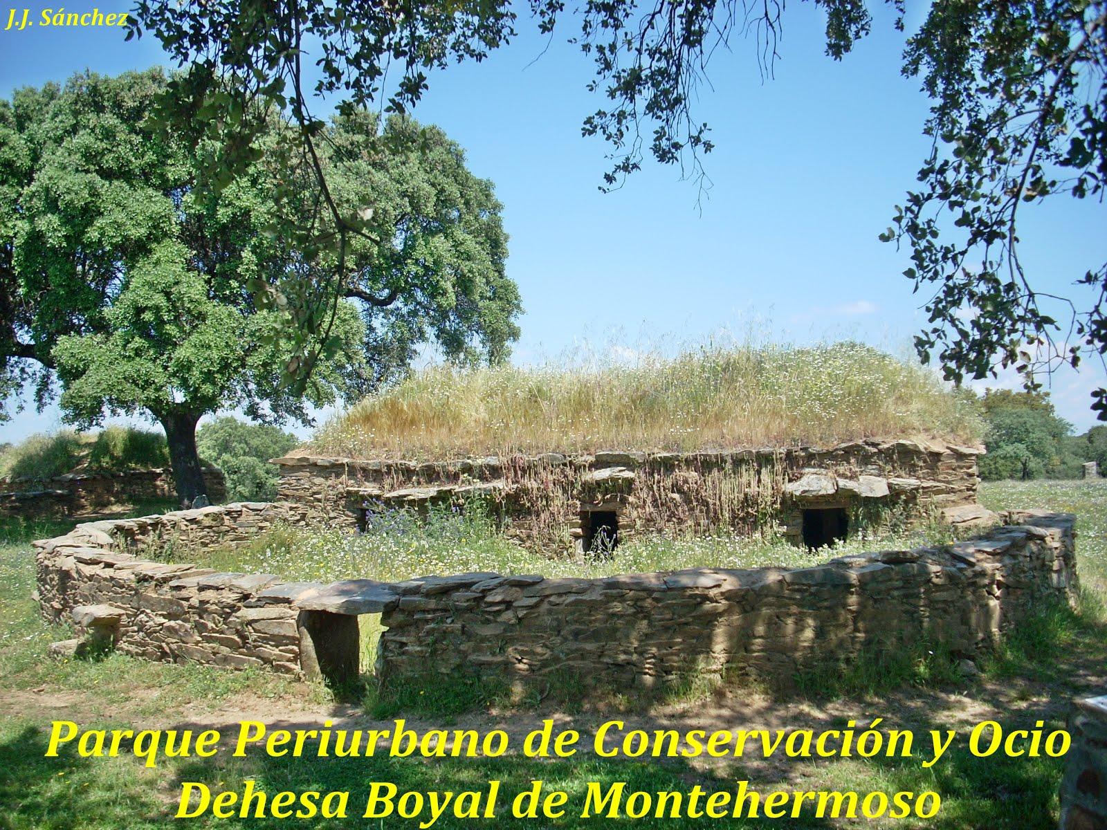"""Parque Periurbano de Conservación y Ocio """"Dehesa Boyal de Montehermoso"""""""
