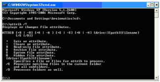 cara mengambalikan file yang hilang 03 Cara Mengembalikan File yang Terhapus oleh Virus