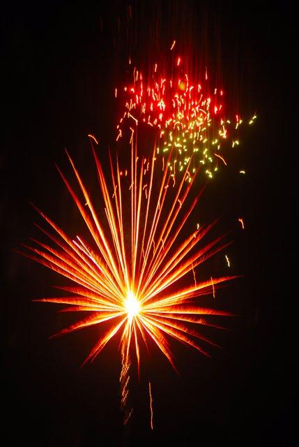 Firework 1699