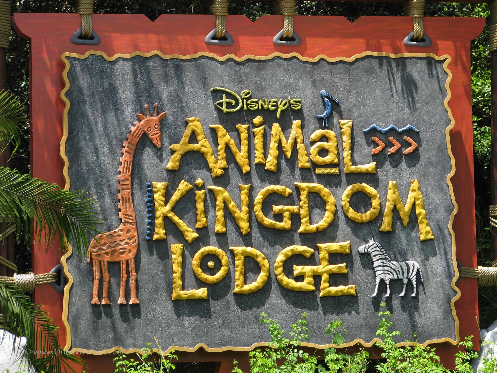animal kingdom Disney world's fourth gate, disney's animal kingdom, will mark its 20th  anniversary on april 22 it's no coincidence that the.
