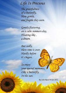 Puisi Mimpi dan Harapan