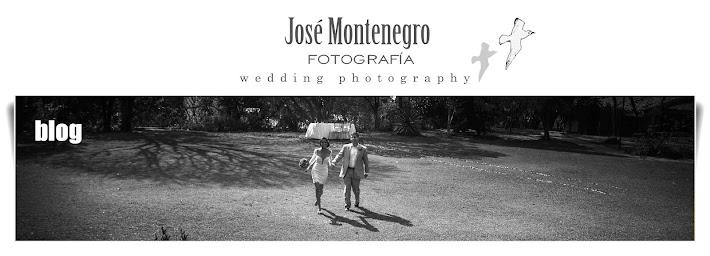 José Montenegro Fotografía