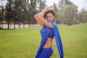 Neelam Upadhyay pics in Blue saree-thumbnail-3