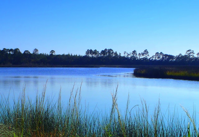 Faver-dykes state park florida photo by dear miss mermaid