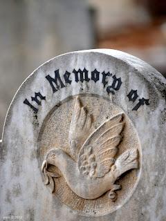 memory dove