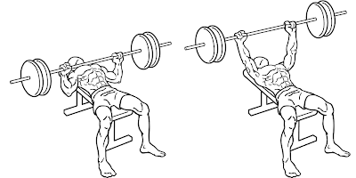 Bench Press schematic