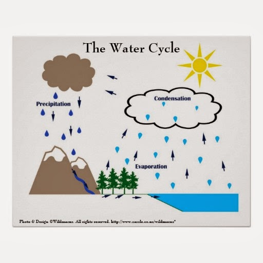 search results for water cycle worksheets 5th grade calendar 2015. Black Bedroom Furniture Sets. Home Design Ideas