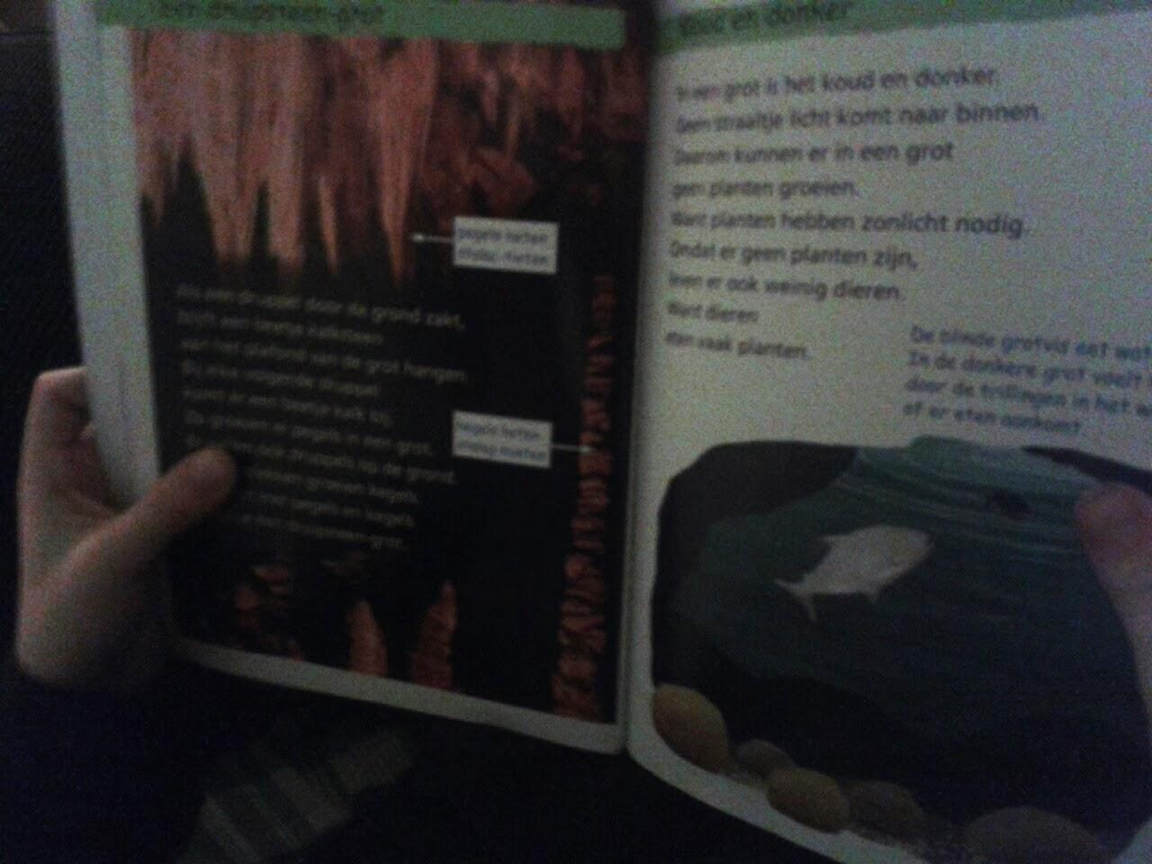 Boekbesprekingboek lezen met zoon.