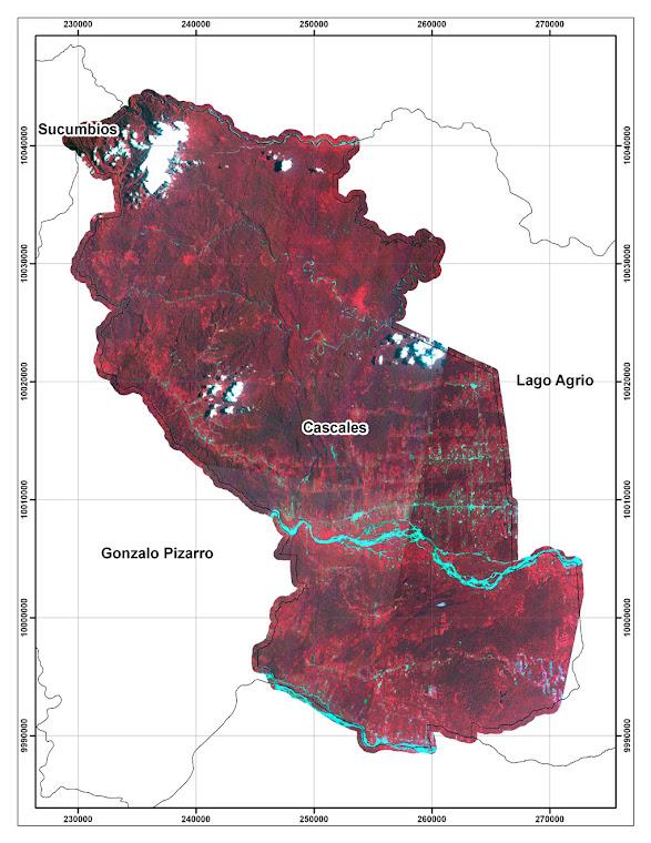Imagen Satelital Aster 2010