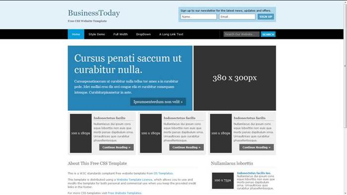 BusinessToday Free CSS Template