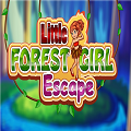 Play9Games Little Forest …