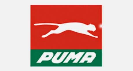 Logo Puma Energy