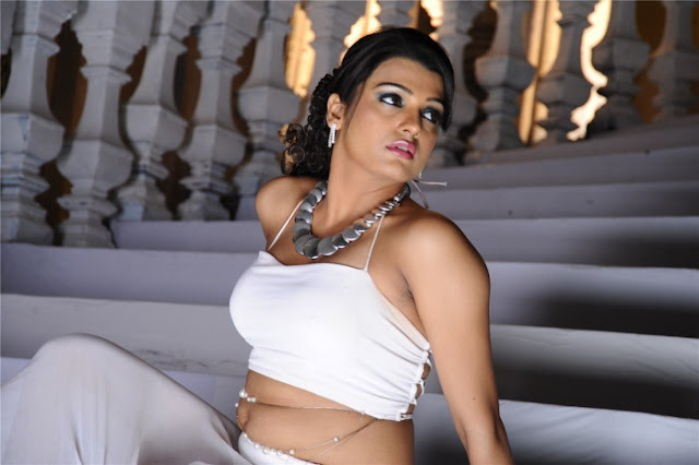 Tollywood Actress Ramya Nabaseen n Tashu Kaushik hot pics
