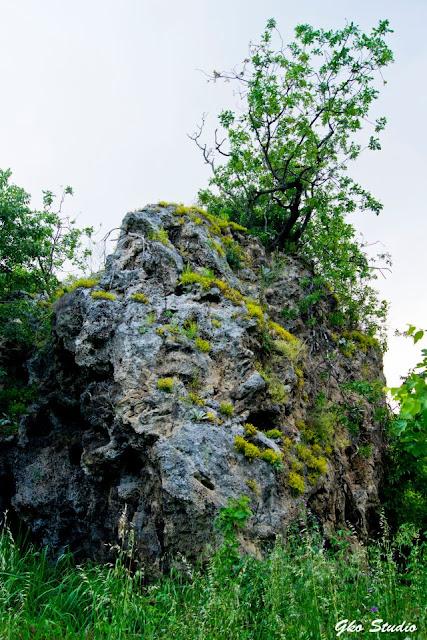 Η πέτρα στον λόγγο
