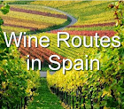 Spanish Wine Tourism Workshop