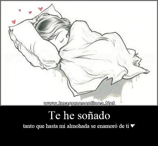 Te he soñado tanto que hasta mi almohada se enamoró de ti ♥