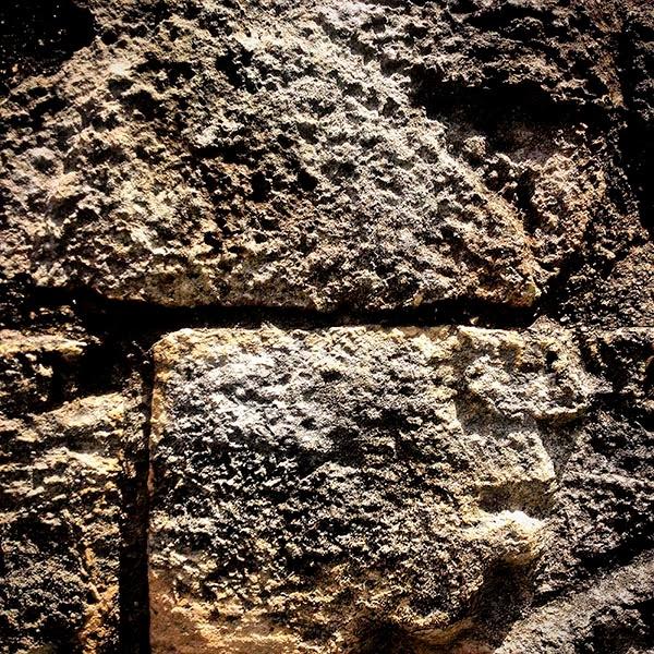 Perfil de un maya en la ciudad de Ek Balam. Según nuestro guía, los mayas se consideran  a sí mismos la gente sin dolor o los que no  sienten dolor.  Maya proviene de la suma de ma  que significa (no) y de yah que significa (dolor).
