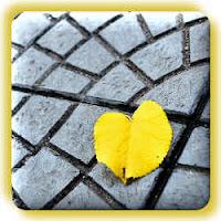 Geel blad op straat