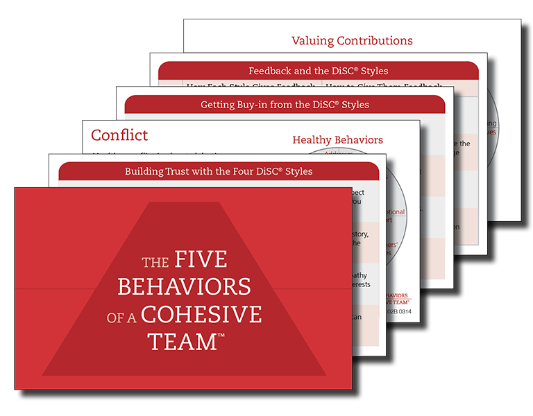 The Five Behaviors of a Cohesive Team Training Accessories