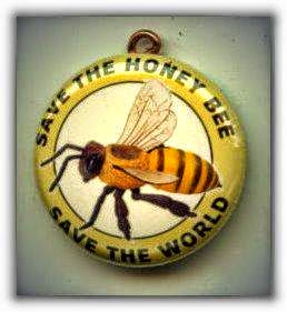 Please, save the bees.