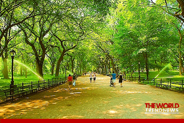 central park, Central Park , Central Park with many attractions - Strawberry Fields, Central Park Zoo, New York City's Atraction