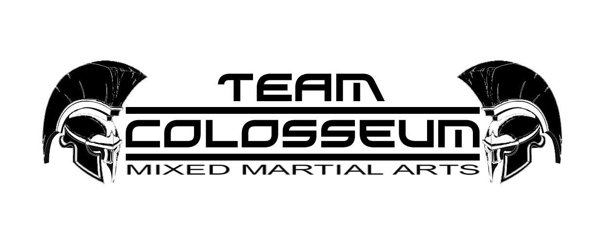 Fighters Team Logo Team Colosseum Fighters