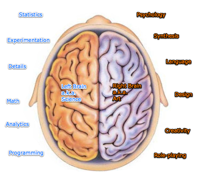 hemispheres of the brain The truth about the left brain / right brain relationship : 137: cosmos and culture is the idea that the left hemisphere of the brain is more logical and the right more intuitive a scientific.