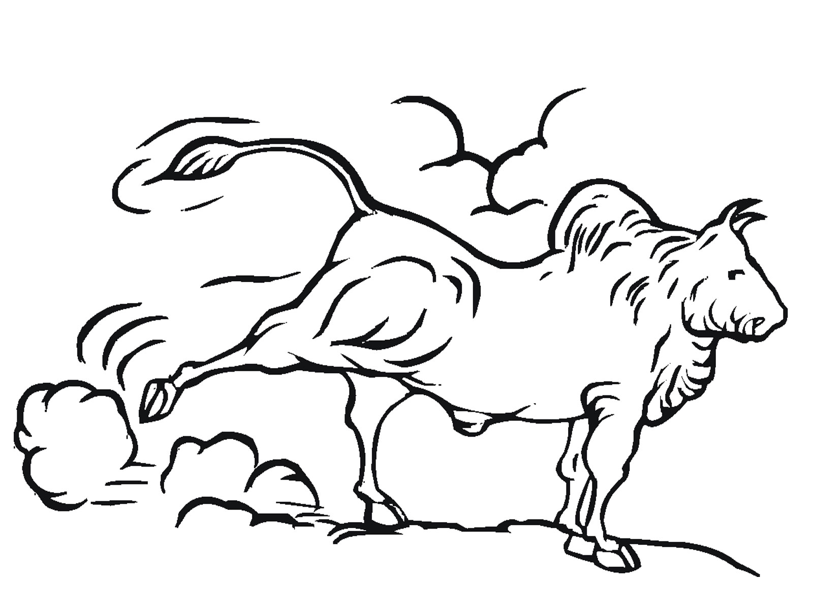 bull coloring pages printable realistic coloring pages Benny the Bull Coloring Pages  Bull Coloring Pictures