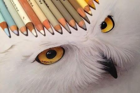 A técnica mista de Karla Mialynne em desenhos incríveis
