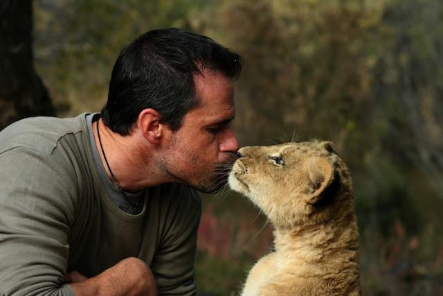 kissing lion