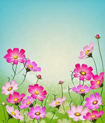 コスモスのの花イラスト・サンプル