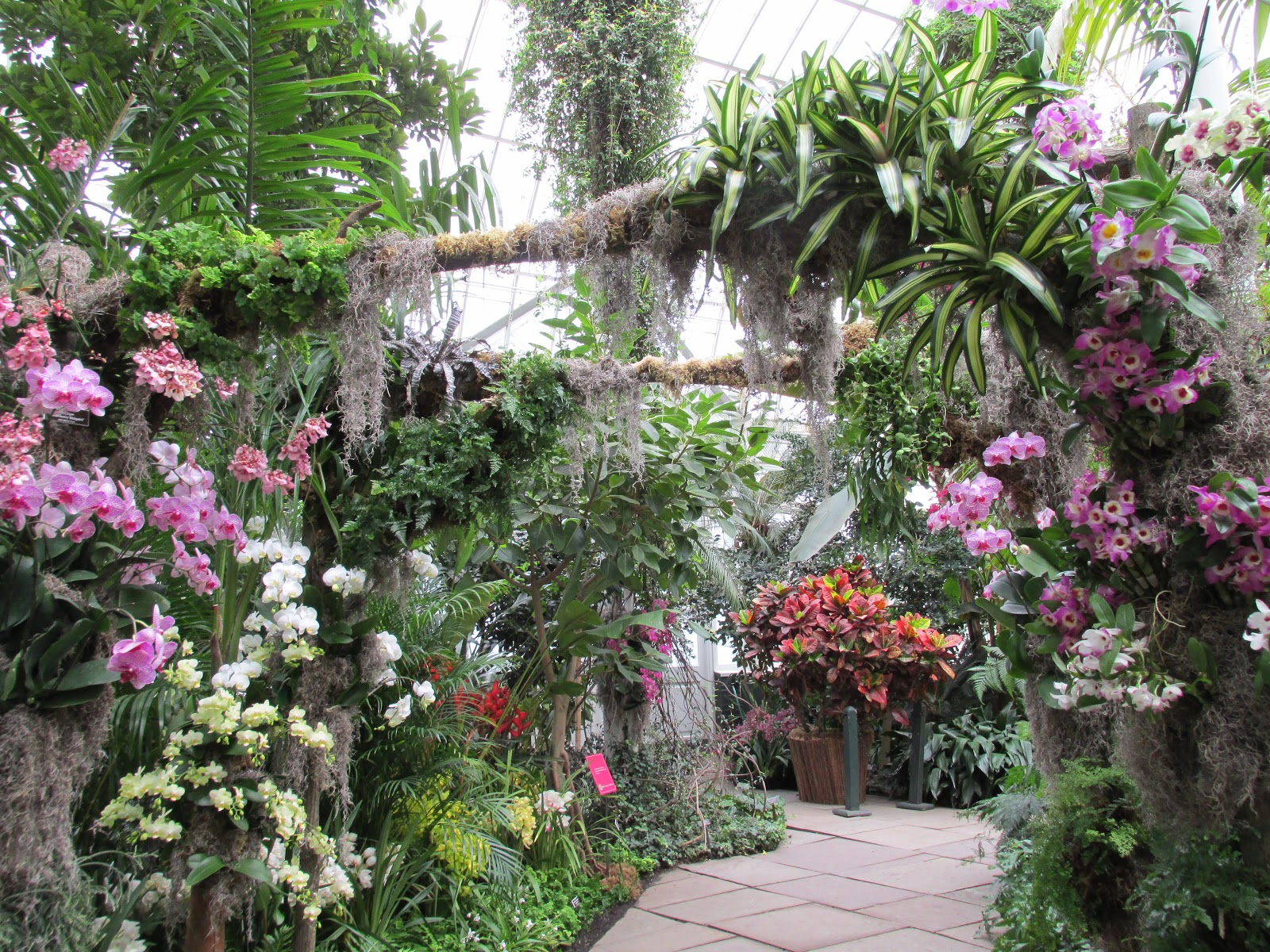 Garden Glamour By Duchess Designs: Exploration U0026 Observations Of The  Dazzling New York Botanical Garden Orchid Show