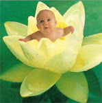 Los bebés de las Flores