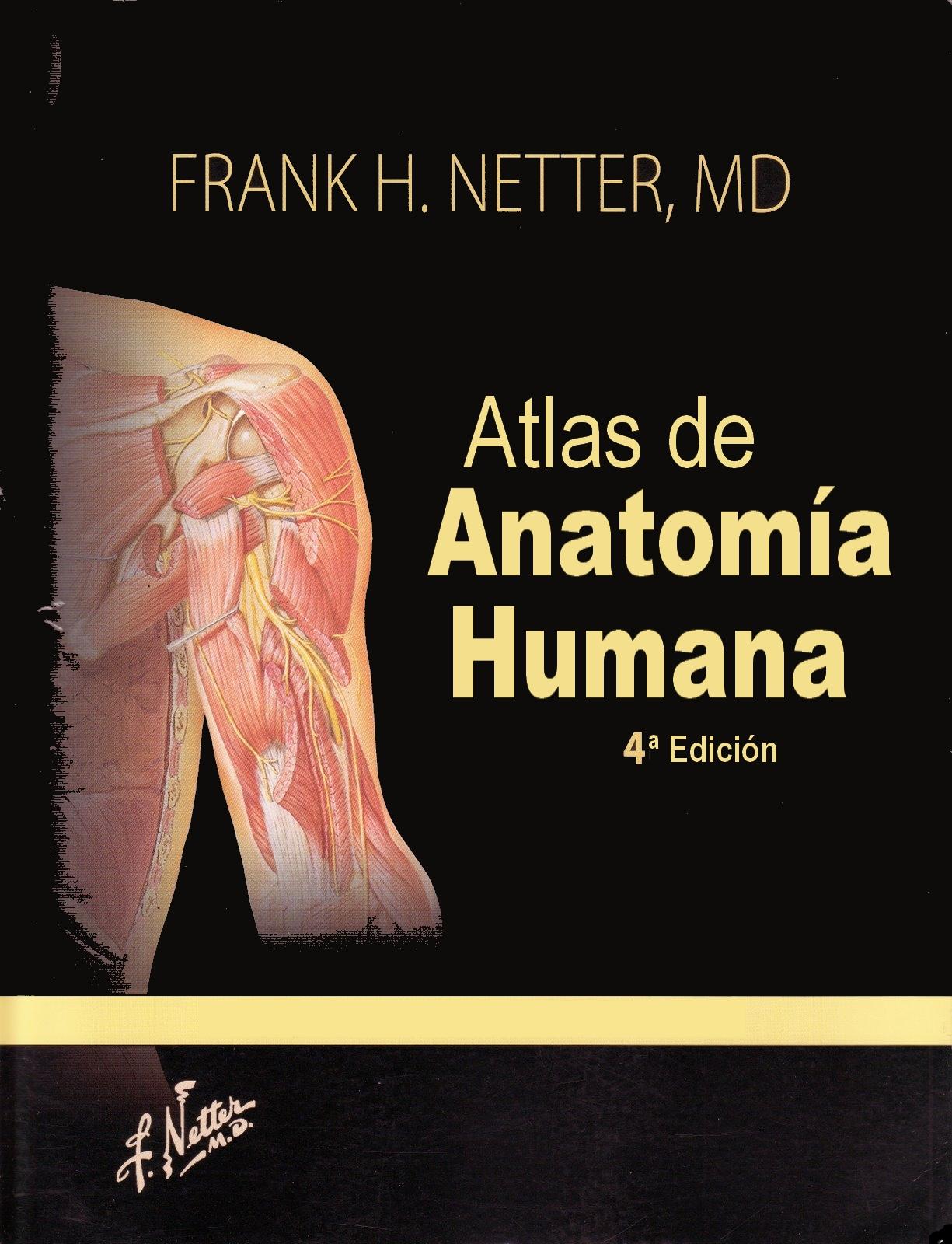 Dorable Atlas De Anatomía Humana 4ª Edición Regalo - Anatomía de Las ...