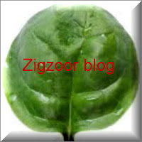 zigzoor blog