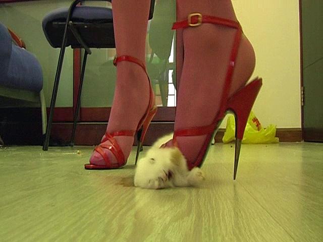 cock trample heels