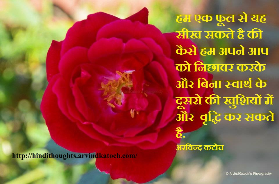 Beautiful Flower Images With Love Quotes In Hindi Allofthepicts