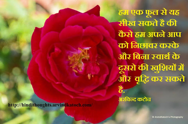 Hindi, Thought, Quote, Flower, Learn